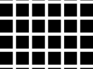 Hermann Grid Illusion