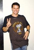 David Boreanaz Picture 3
