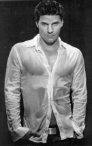 David Boreanaz Picture 4