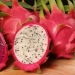 Pitaya, an exotic fruit with extreme health benefits