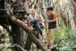 bridge_to_terabithia_photo.jpg