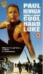 cool_hand_luke_image1.jpg