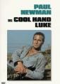 cool_hand_luke_img.jpg