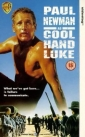 cool_hand_luke_picture1.jpg