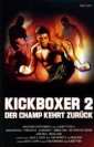 kickboxer_2__the_road_back_picture1.jpg