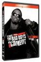 p__diddy_presents_the_bad_boys_of_comedy_picture.jpg