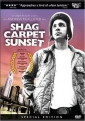 shag_carpet_sunset_picture.jpg