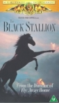 the_black_stallion_img.jpg