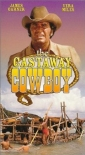 the_castaway_cowboy_picture1.jpg