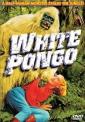 white_pongo_picture.jpg