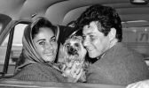 eddie fisher and elizabeth taylor picture