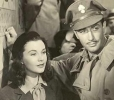 vivien leigh and robert taylor photo2