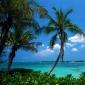 Adventures in Bahamas