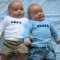 How are twins produced?