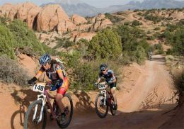 Mountain Racing Bikes