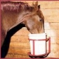 Quote : You Can Lead a Horse to Water but You Can't Make Him Drink