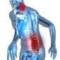 Relief from Pain of Joints