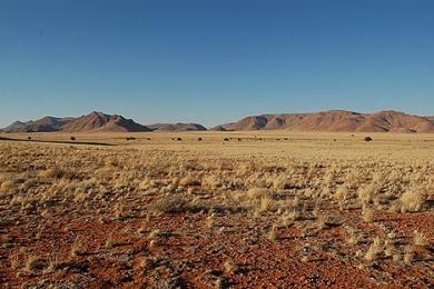 The desert process