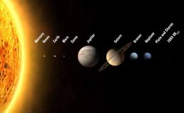The role of the Planets in the Zodiacal Signs
