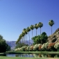 Things to do at Palm Springs