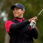 Tiger Woods achieves the level of great players
