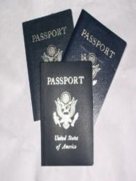 Tips to get passport faster