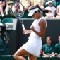 Venus Williams - 2008