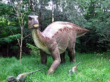 What was Iguanodon?
