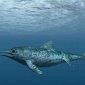 What were ichthyosaurs?