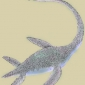 What were plesiosaurs?