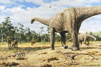 What were sauropods?