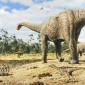 What were sauropods?