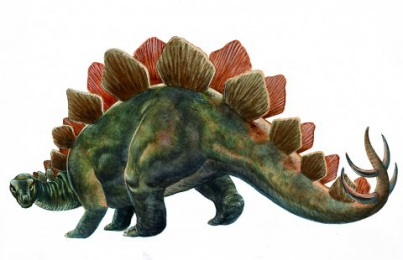 What were stegosaurs?