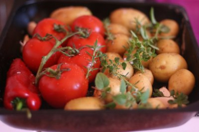 Where did potatoes, maize and tomatoes come from?