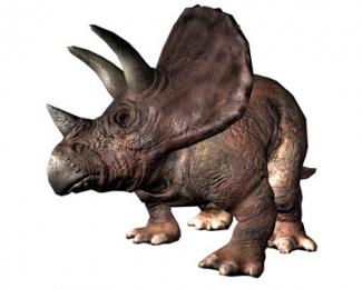 Which dinosaur behaved like a rhinoceros?