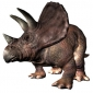 Which dinosaur behaved like a rhinoceros?