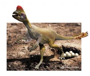 Which dinosaur had a head like a parrot?