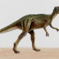 Which dinosaur was bone-headed?