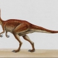 Which theropod dinosaur was not a meat-eater?