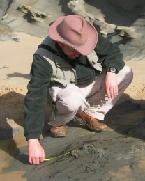 Why do palaeontologists disagree about dinosaurs?