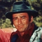 James Drury