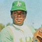 Vida Blue
