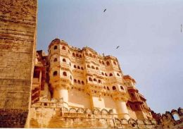 Land of Sand dunes and wildernesses- Exploring Rajasthan